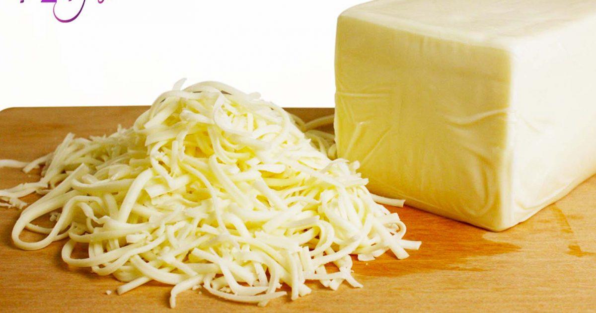 أماكن بيع الجبنة الموزاريلا جملة