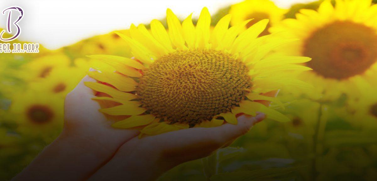 هل لب عباد الشمس يزيد الوزن أم ينقصه